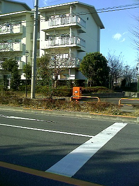 ポスト写真 : img696.jpg : 国立市北三丁目第2アパート11号棟そば : 東京都国立市北三丁目2-1